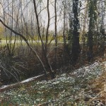 """Snowdrops and stream"" Mixed media 11 x 10"" A painting by Rory Browne"