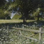 """The gate. Cow parsley and oak"" A painting by Rory J Browne"