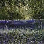 """Bluebell Wood"" Mixed media. A painting by Rory Browne"