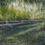 """Shadows and Light, bluebells"". Oil on canvas. 100 x 100 cm. A painting by Rory Browne"