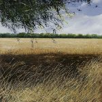 """Harvested field and shadow"" Oil on canvas. 50 x 47 cm. A painting by Rory Browne"