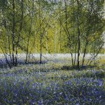 """Light in the glade; bluebells"" Watercolour and ink. 37 x 34cm. A painting by Rory Browne"