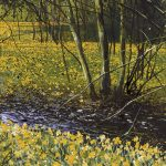 """Stream and Daffodils"" Mixed media. 18 x 14 cm. A painting by Rory Browne"